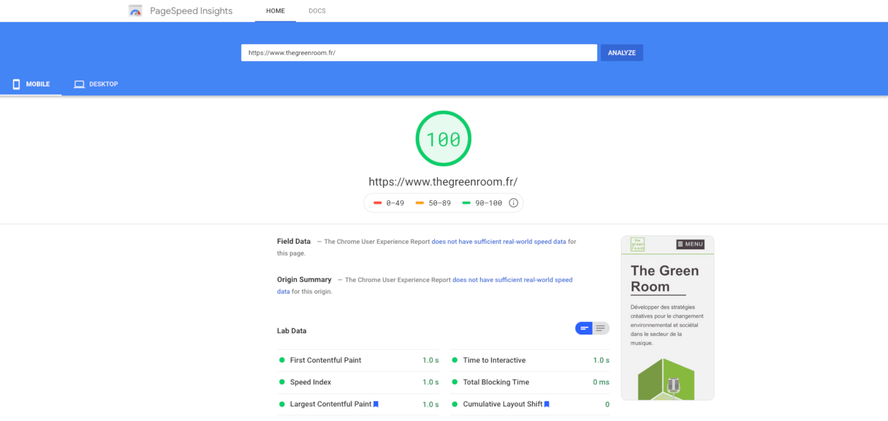 Résultat d'un test de performance sur Google Page Speed